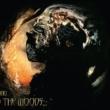 Resenha: In The Woods – Omnio (1997 – Relançamento 2020)