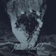 Resenha: Marko Hietala – Pyre of the Black Heart – (2020)