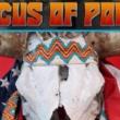 Resenha: Circus of Power – The Process of Illumination EP (2020)