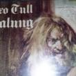 Sugestão do dia: Jethro Tull, Aqualung