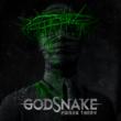 Resenha: Godsnake – Poison Thorn (2020)