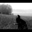 """Cadaver: Confira o vídeo de """"Reborn"""""""