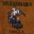 Trio stoner Muladhara estreia com a potente Pangea