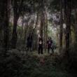 """Acidemia: trio catarinense de Stoner/Doom lança novo single """"Névoas de Ácido"""""""