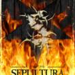 Sepultura: livro sobre os primórdios da banda é relançado
