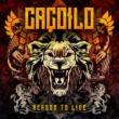 Leandro Caçoilo lança clipe de 'Reason to Live', faixa do debut solo 'Building My Own Kingdom'