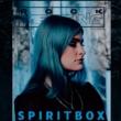 Rock Meeting: revista online completa 12 anos e traz capa com Spiritbox
